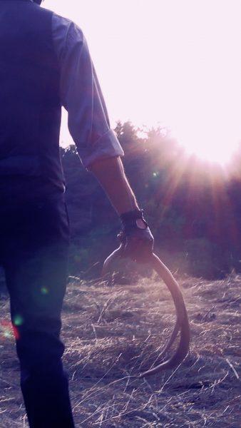Mali Weil - Animal Spirits - fashion video - still